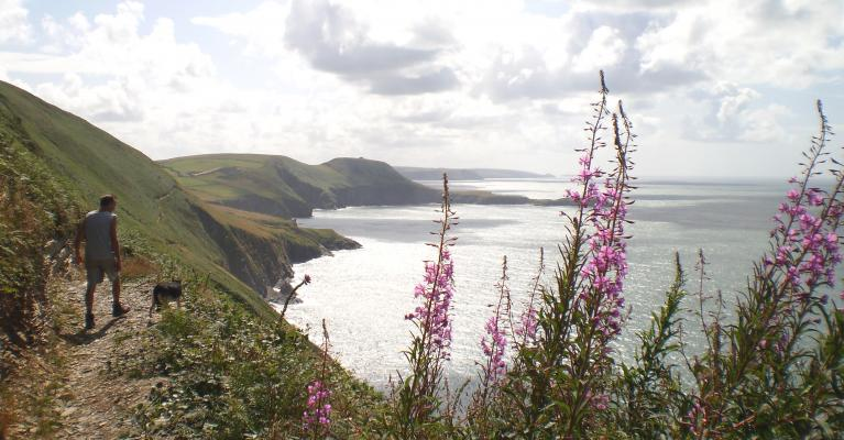 Explore the Stunning Ceredigion Coastal Path